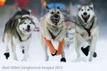 Yukon Quest 2012, Start Line