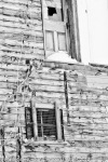 Dawson City….