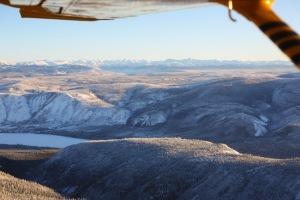 Yukon Quest 2014