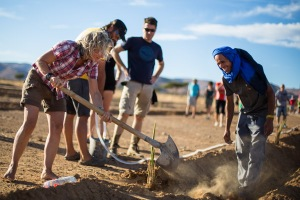 Runners of the Eco Sahara race planted over 40 trees before the start